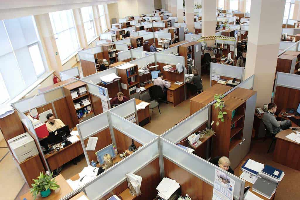 Employees 95311